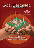 Revista Gas y Petroleo